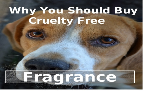 why you should buy cruelty free fragrance