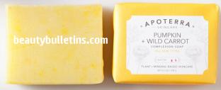 apo-pumpkin soap